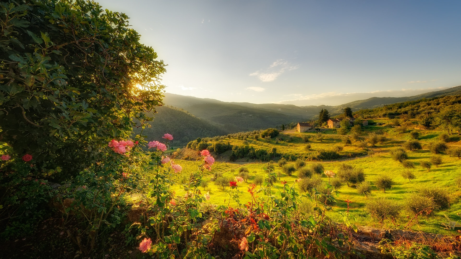 Tuscany desktop wallpaper