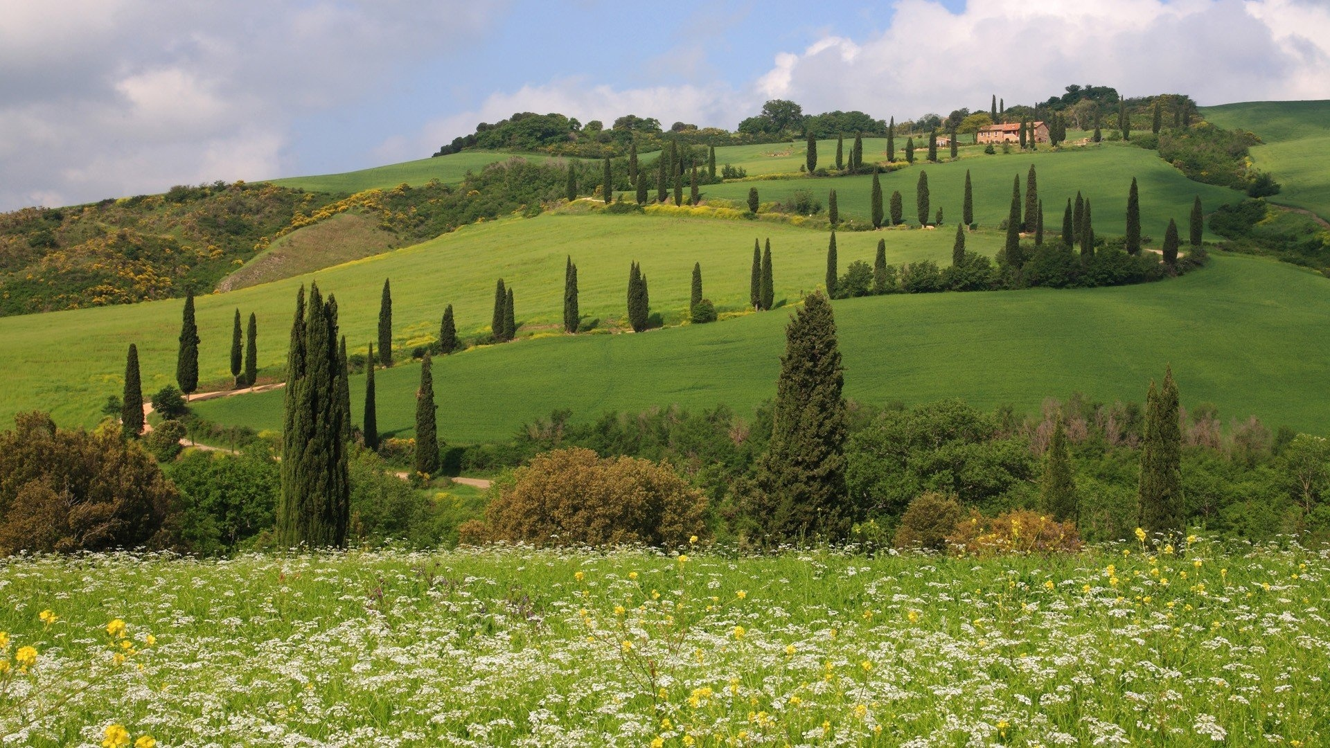 Tuscany free picture