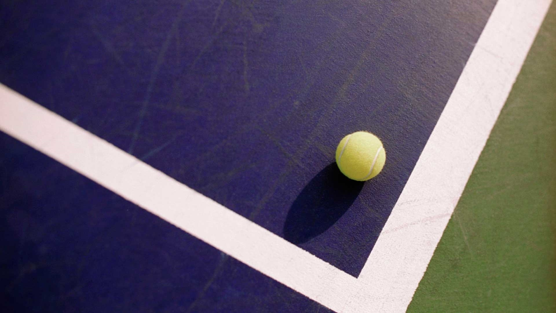 Tennis Ball windows background