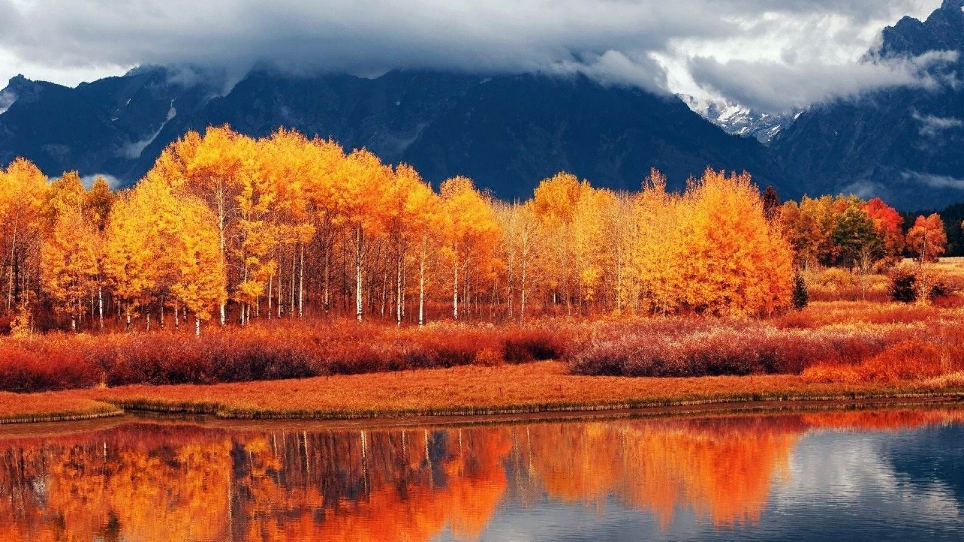 Autumn best wallpaper