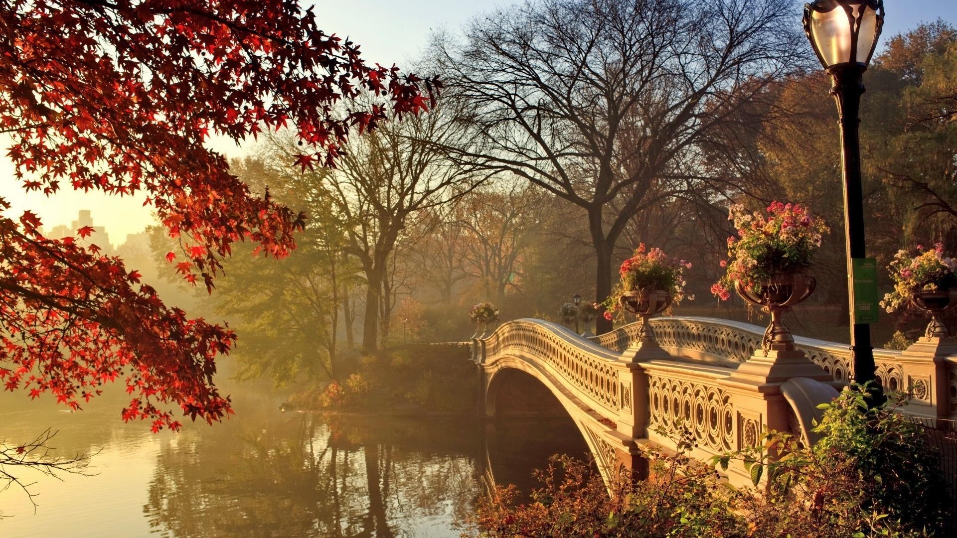 Autumn free background