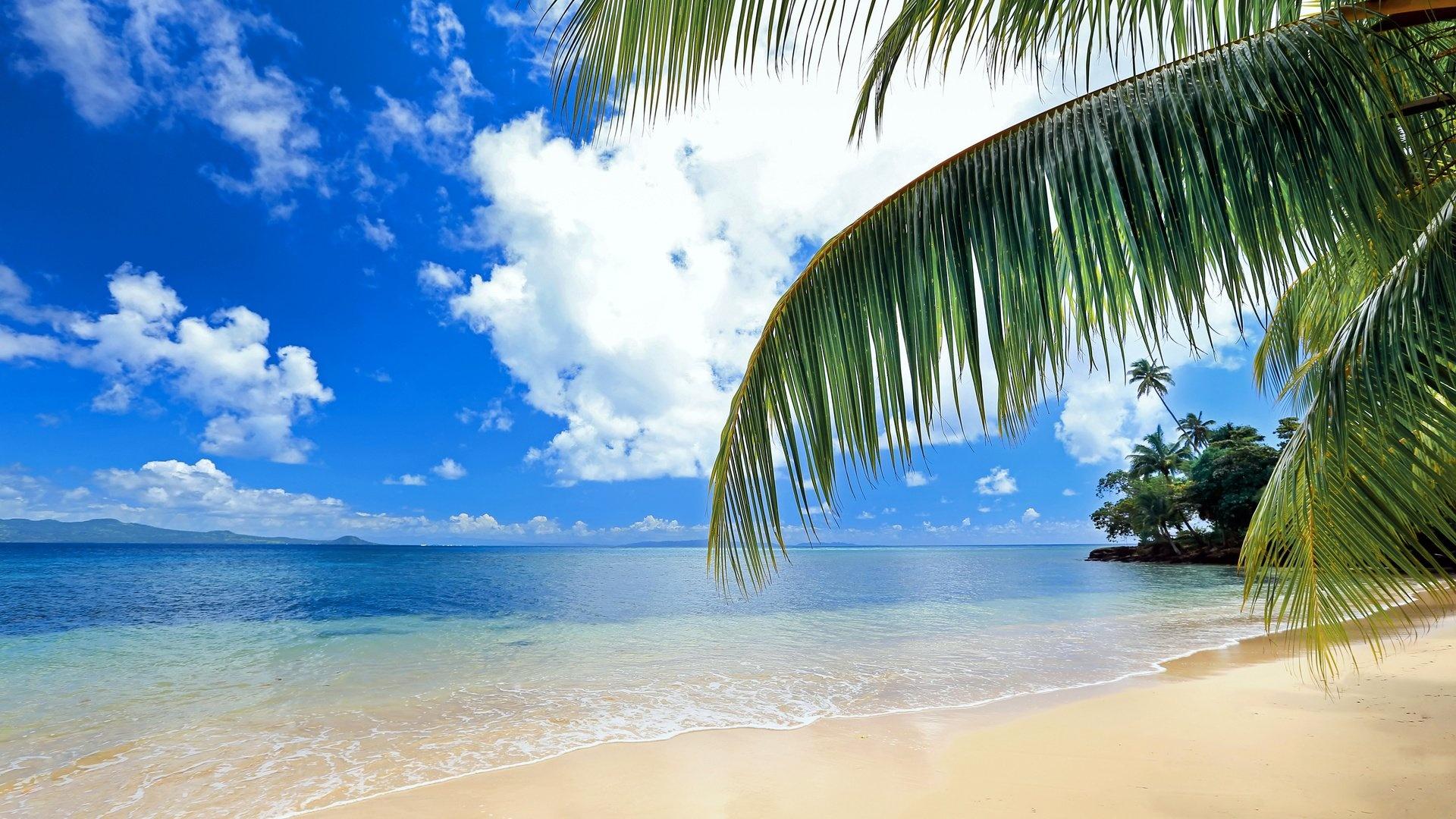 Beach best background