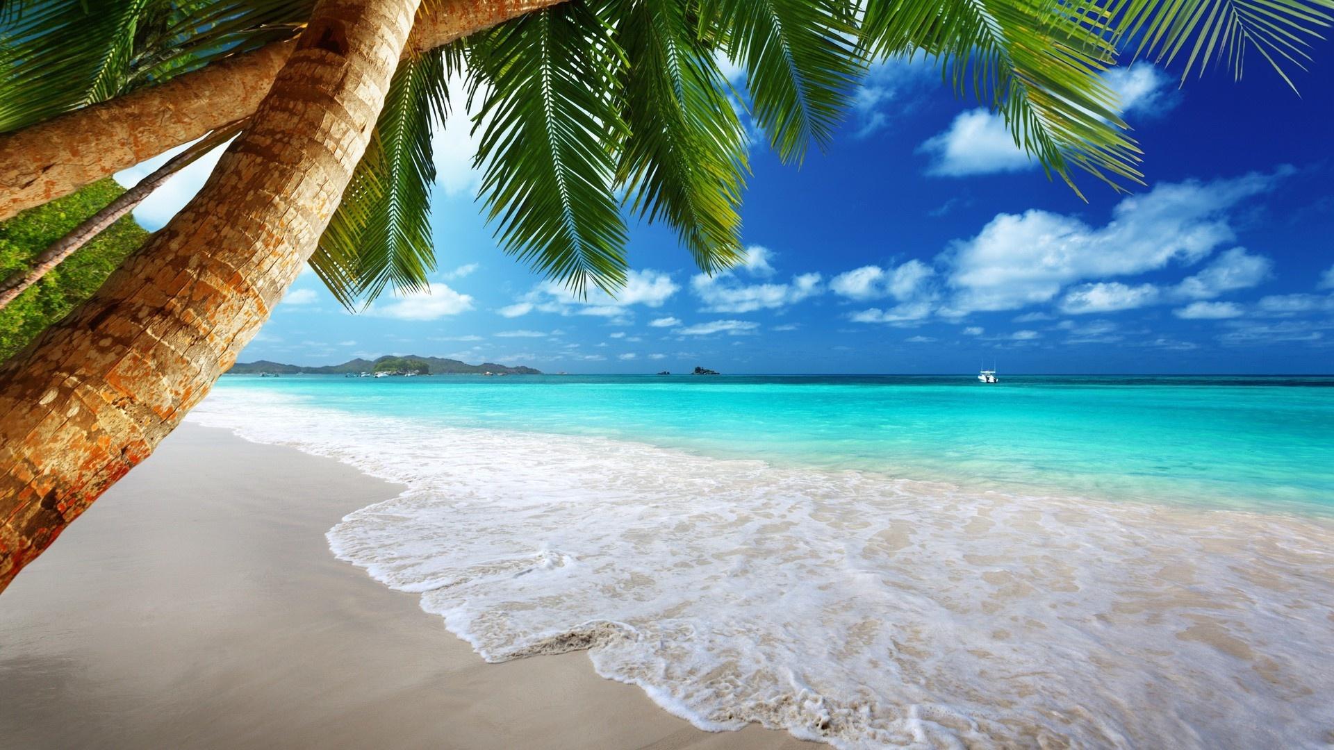 Beach free photo
