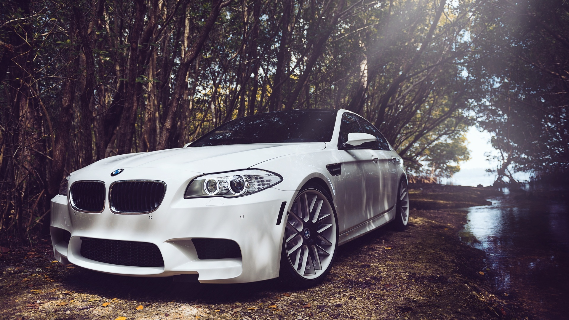 Bmw background picture
