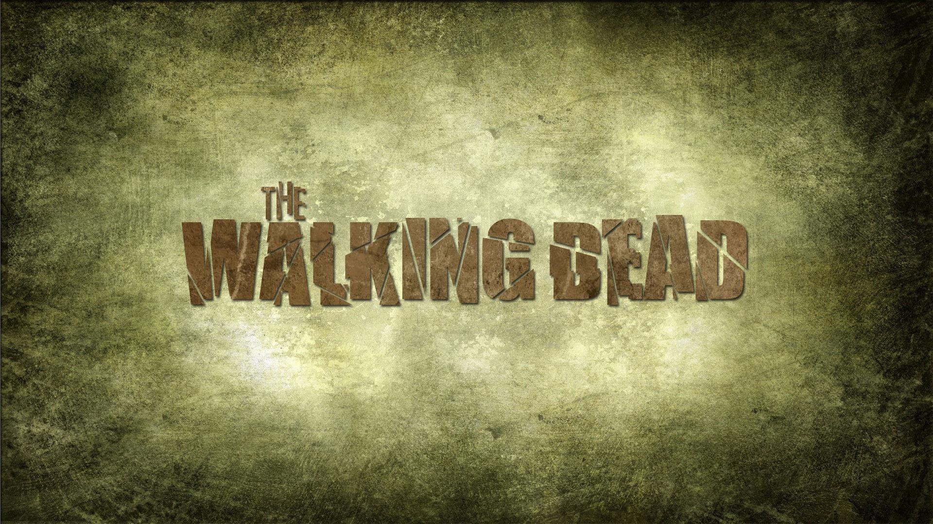 The Walking Dead hd background