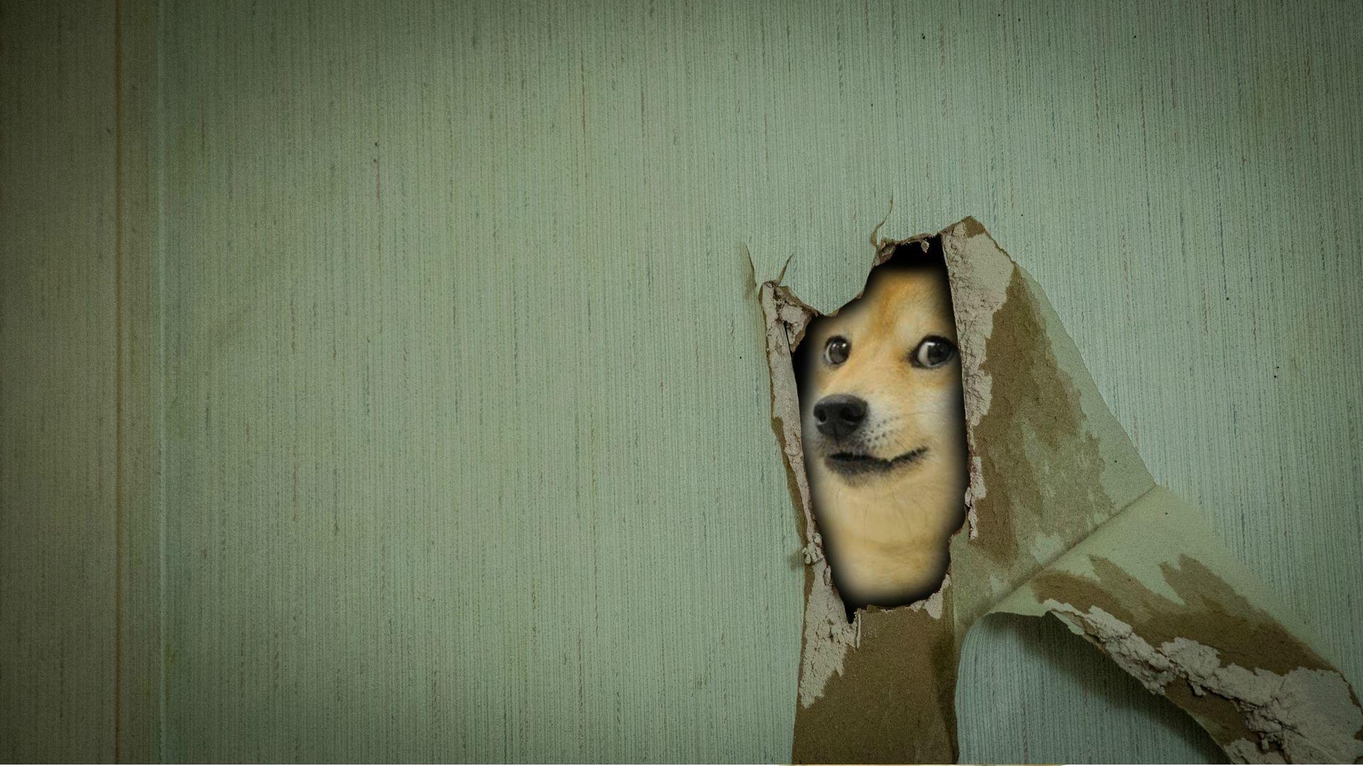 Doge Meme computer background