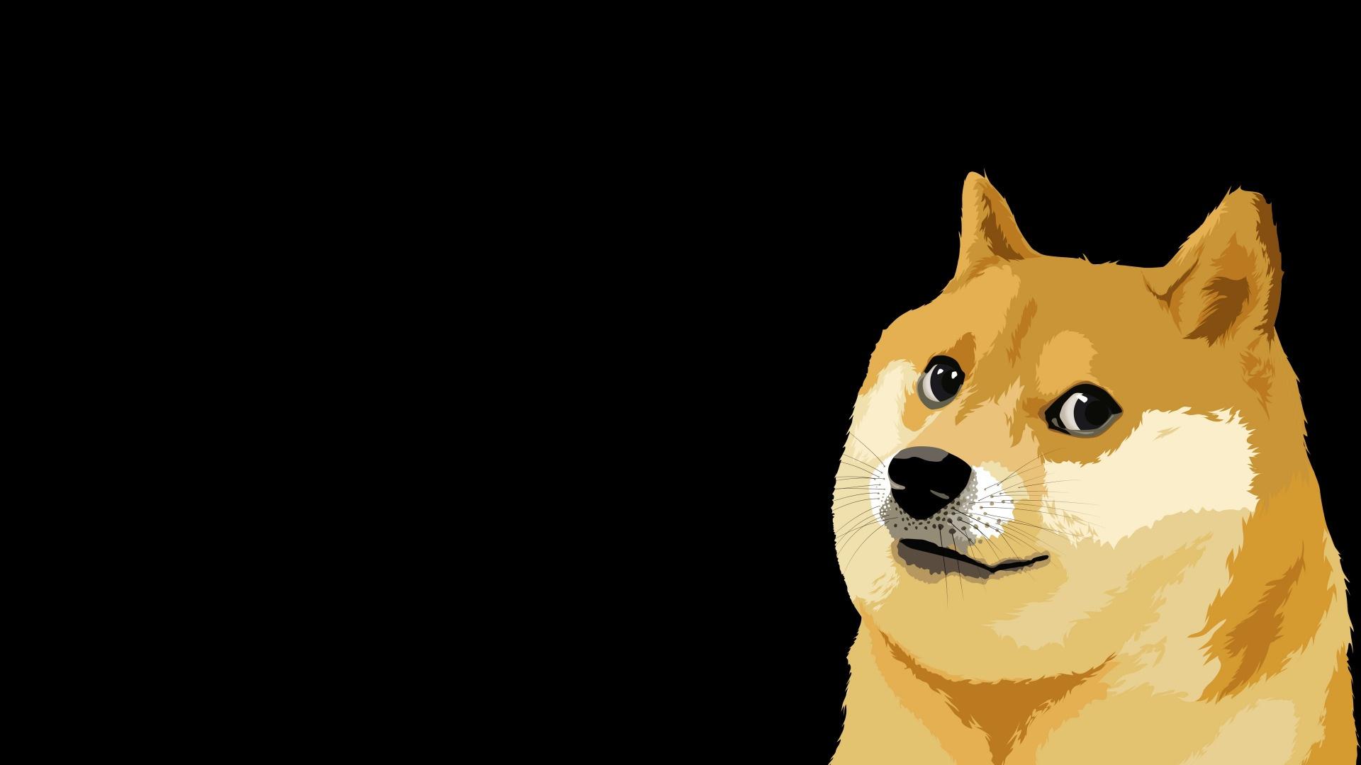 Doge Meme best wallpaper