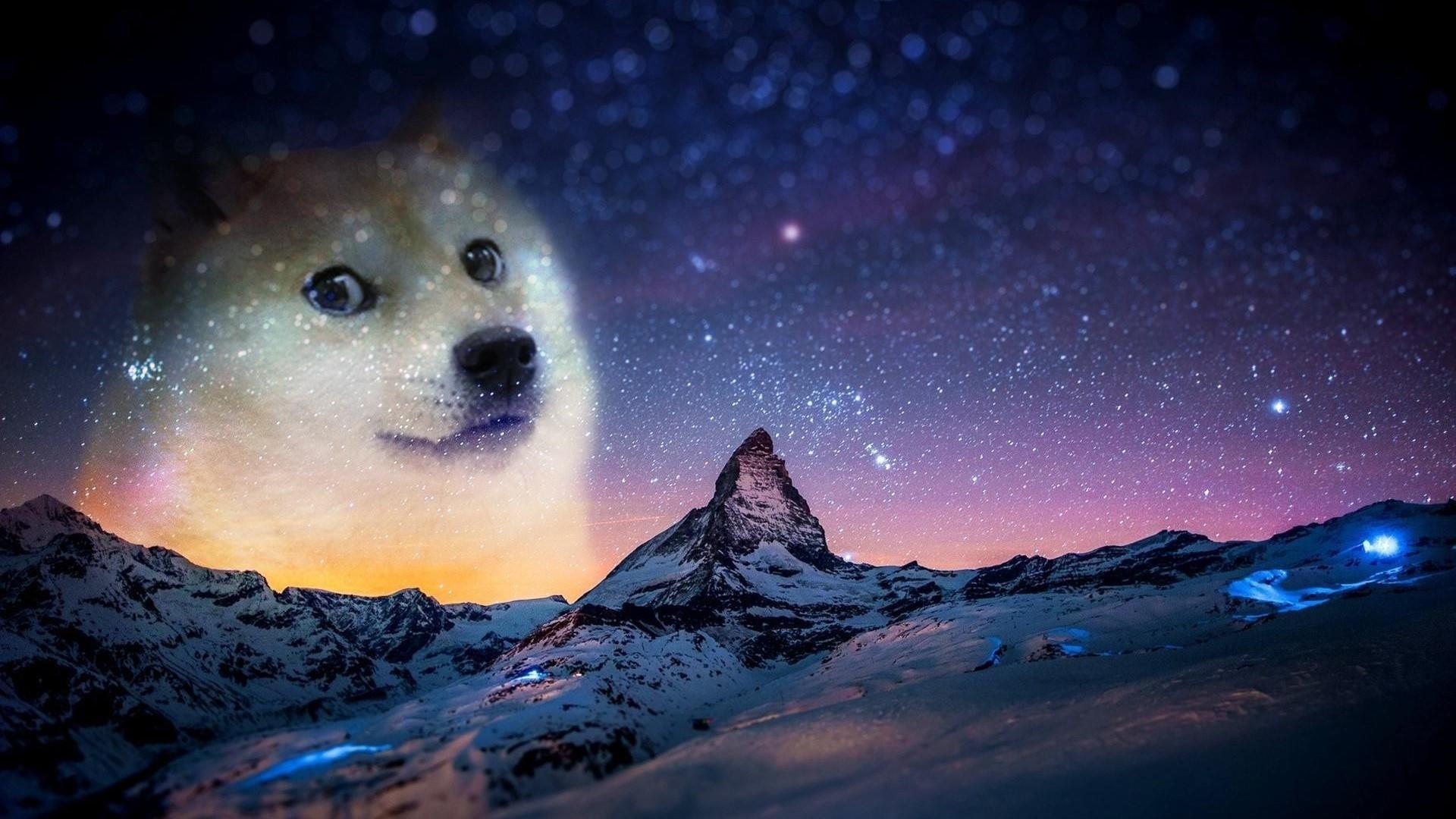 Doge Meme free background