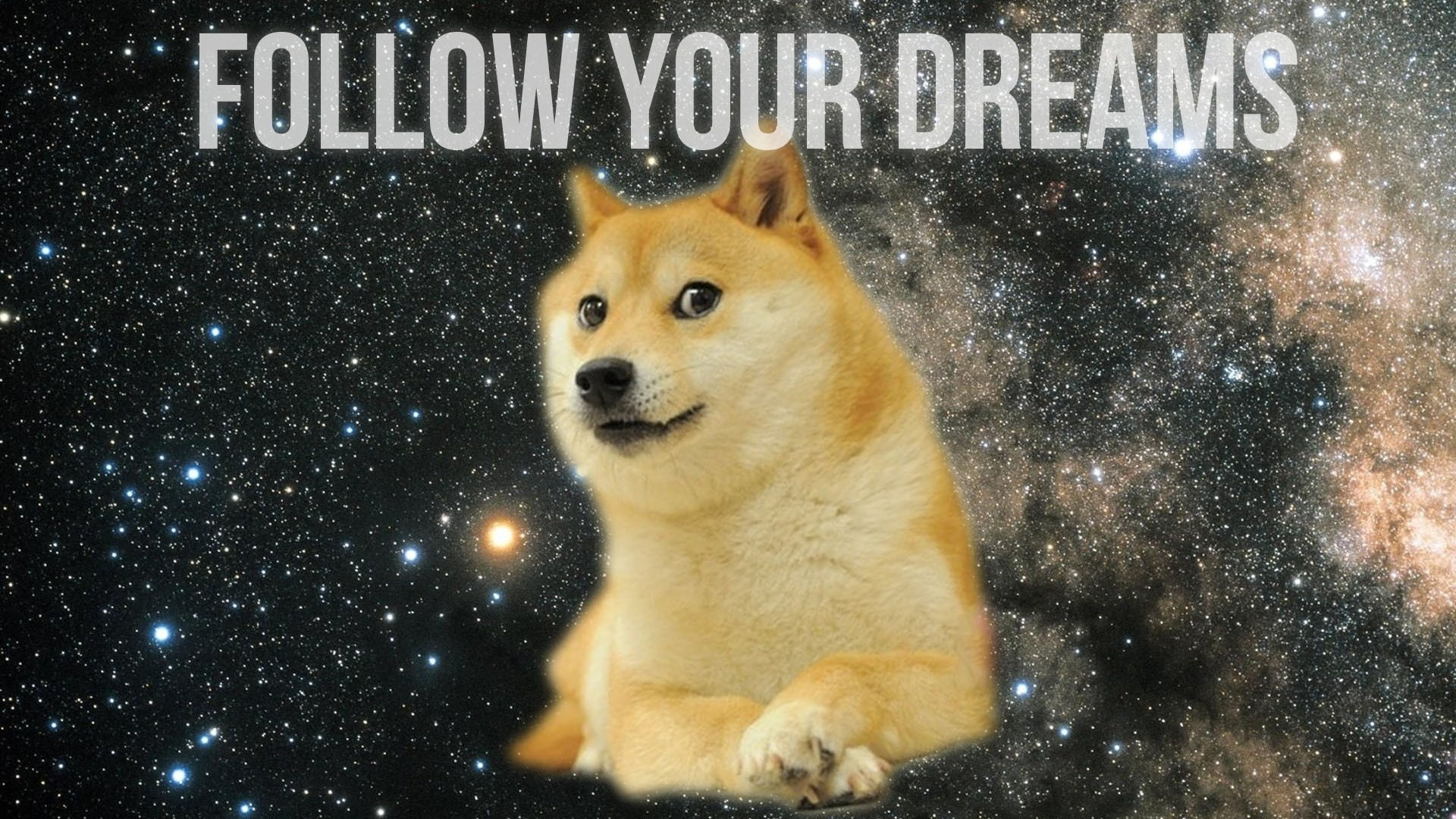 Doge Meme background wallpaper