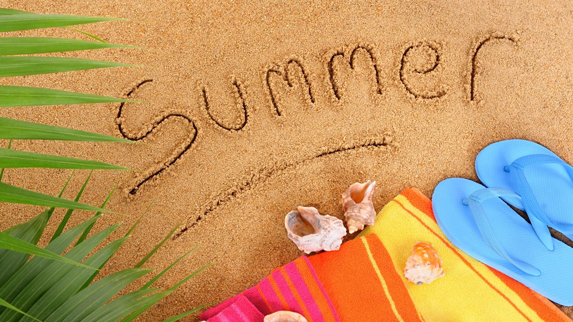 Summer free background