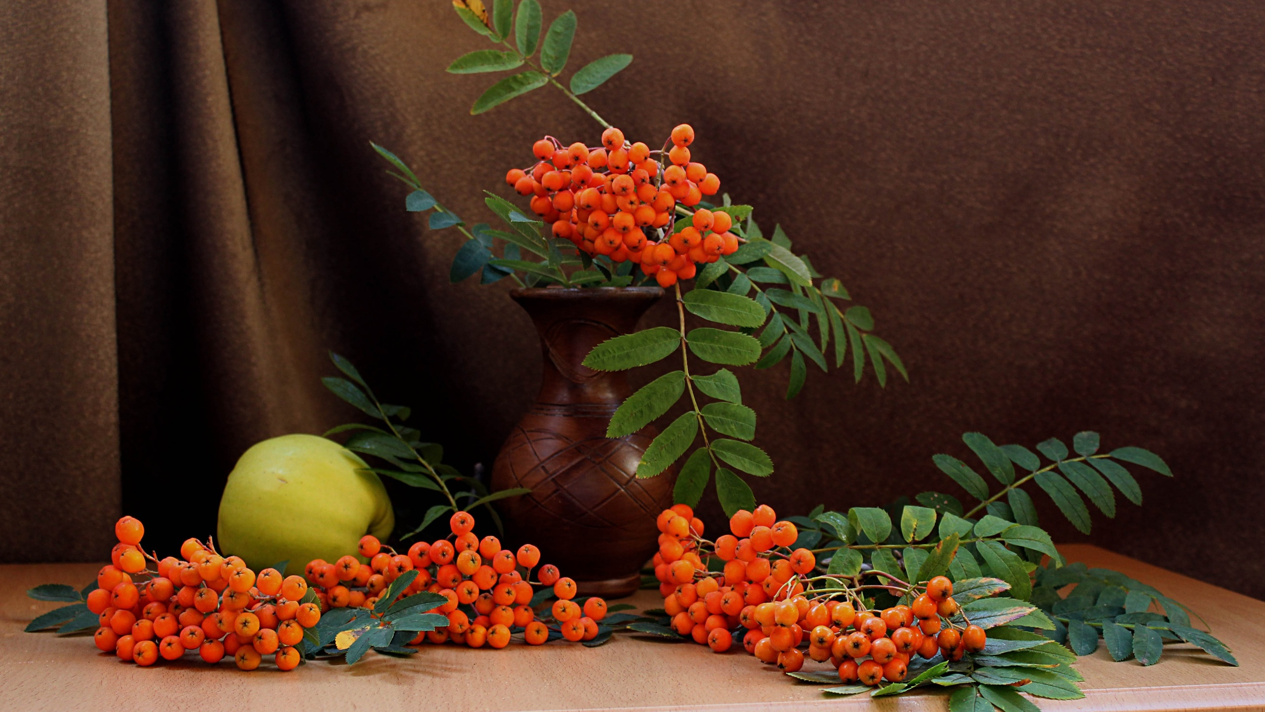 Berries On A Branch background wallpaper