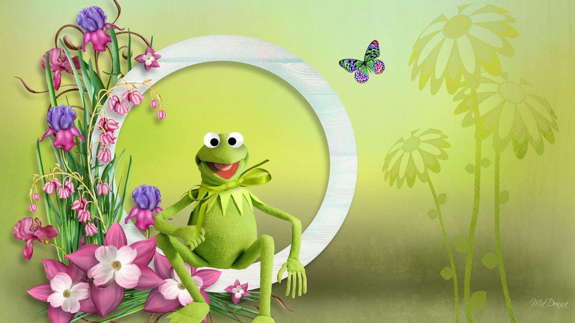Cartoon Frog desktop background