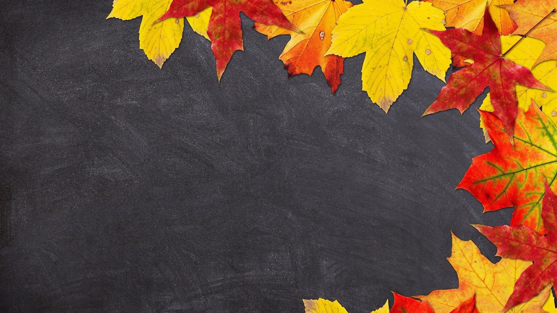 School desktop background