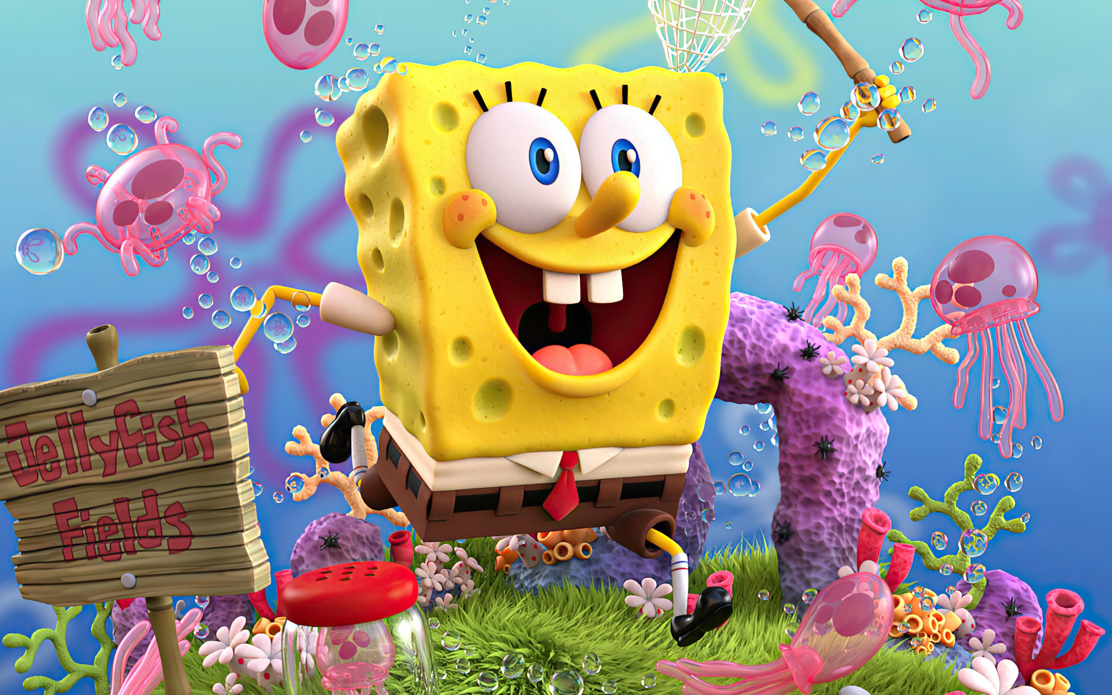 Sponge free pic