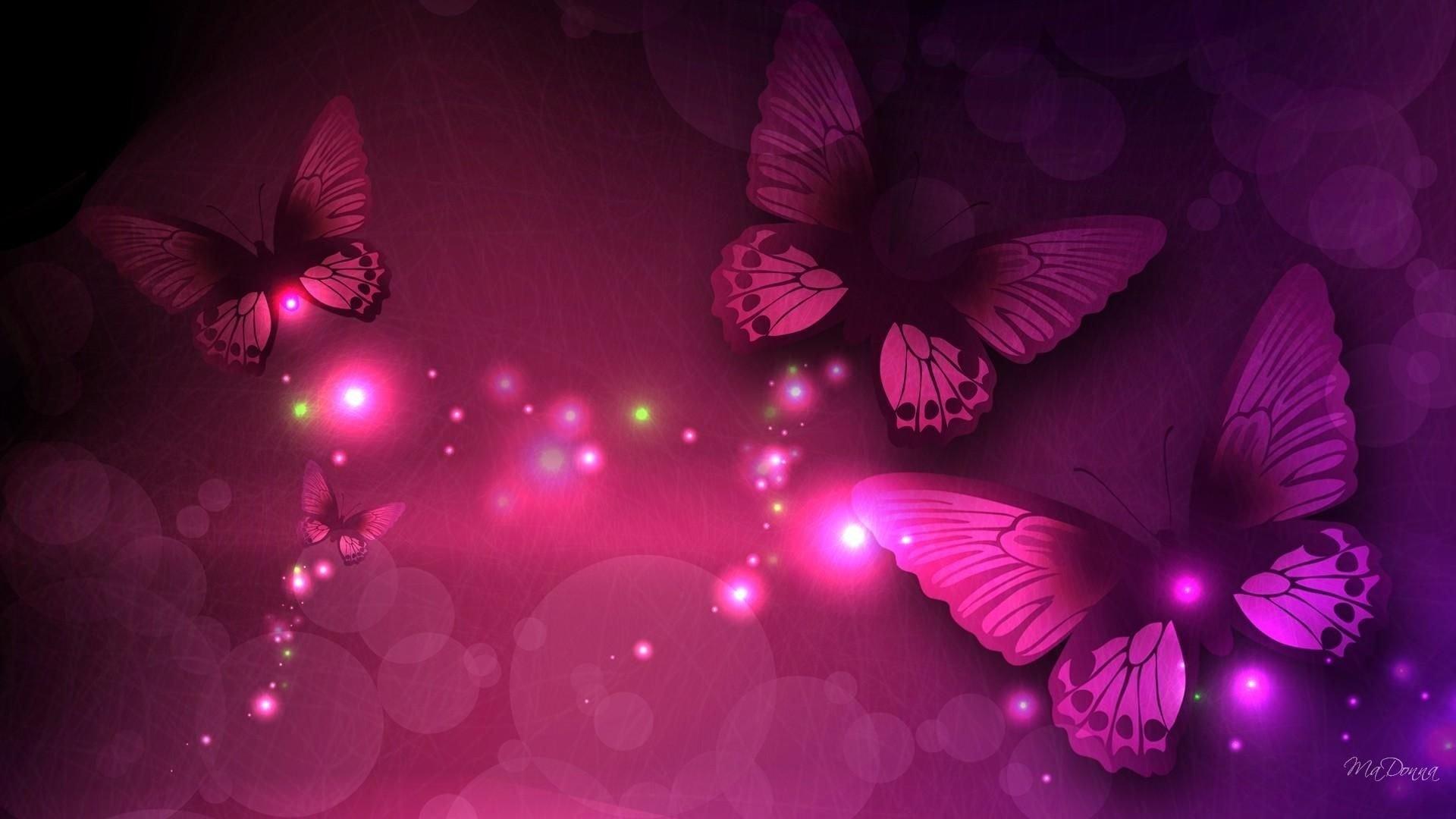 Butterfly best wallpaper