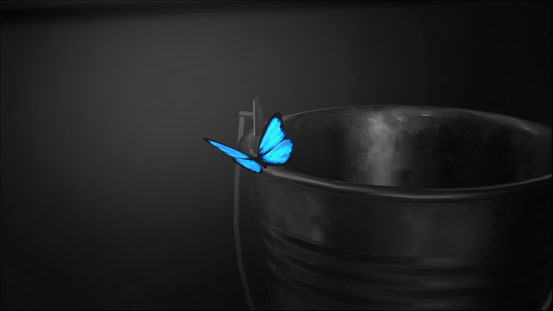 Butterfly free image