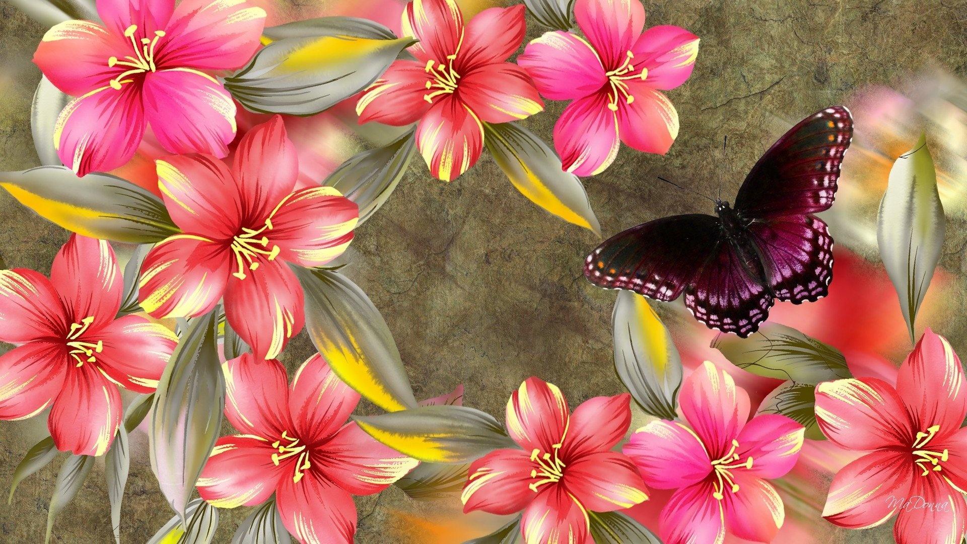 Butterfly wallpaper hd