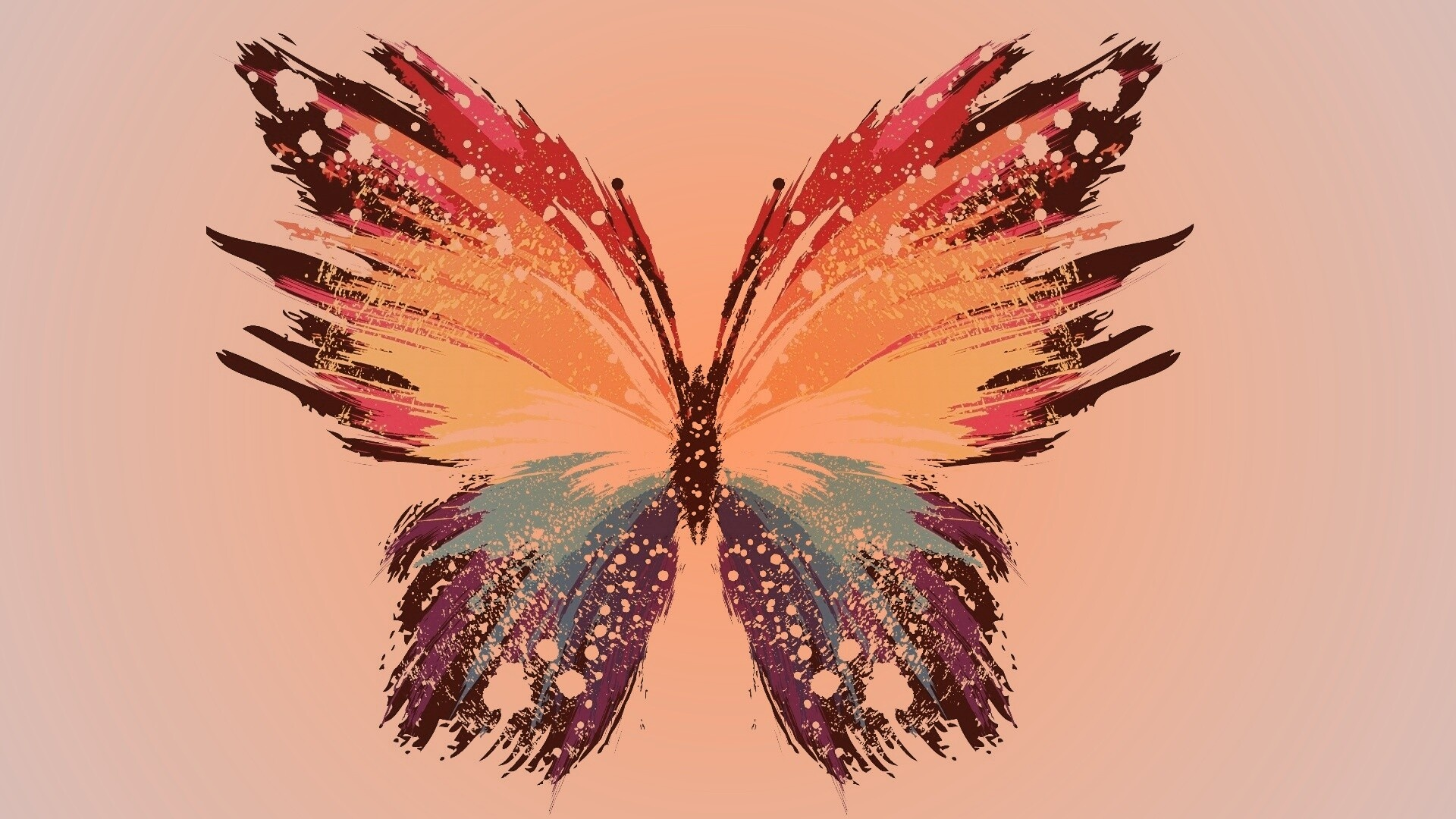 Butterfly background picture