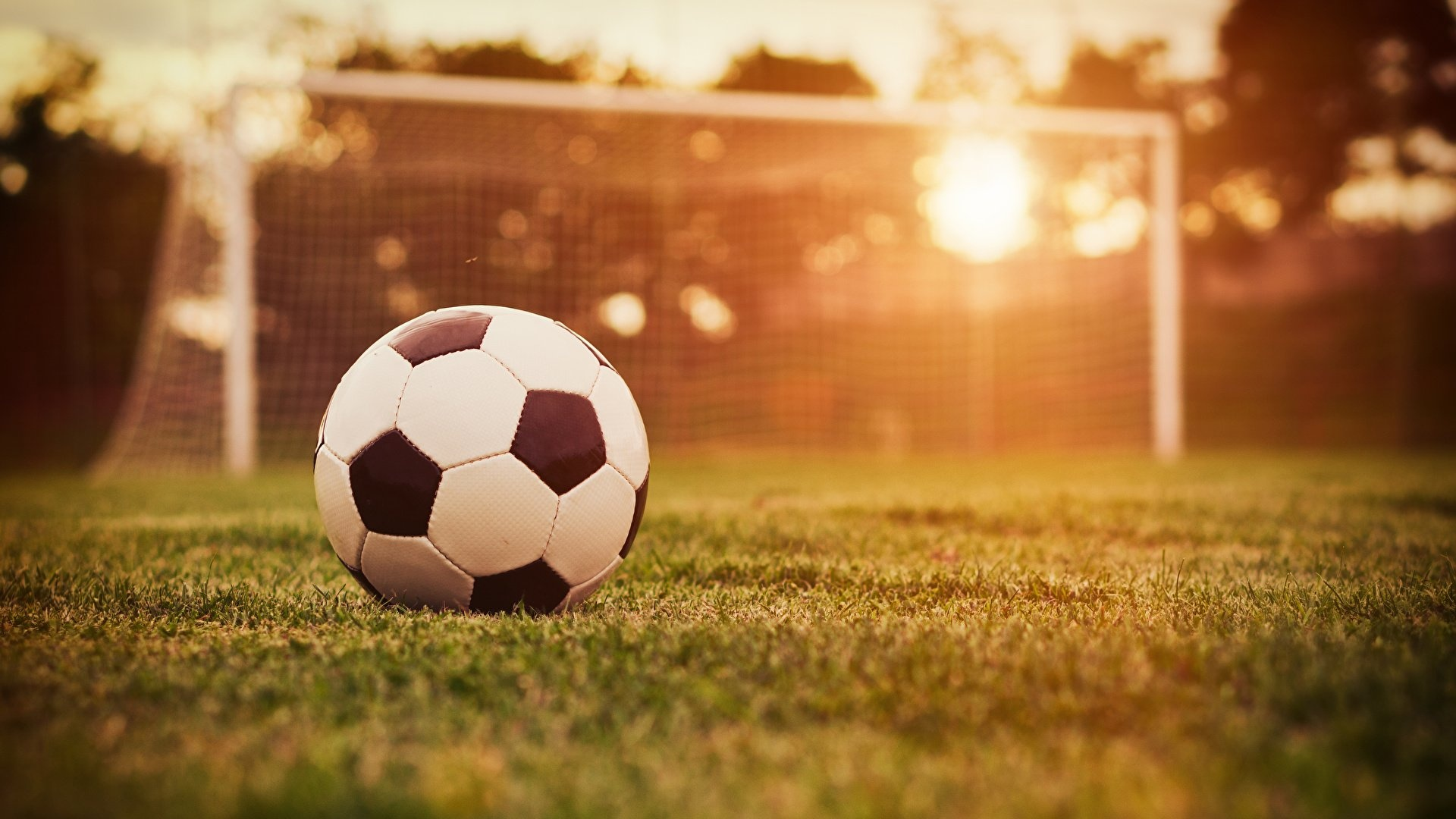 Soccer hd background