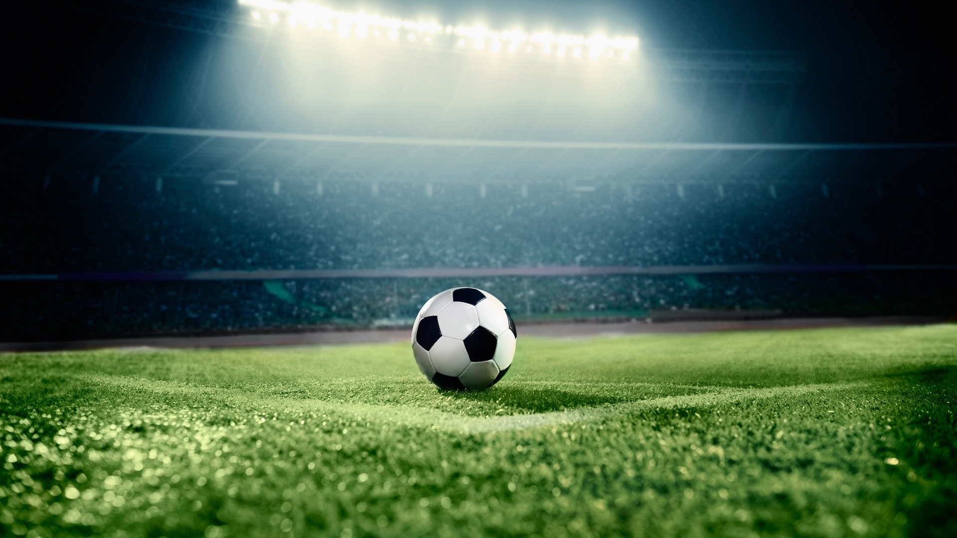 Soccer free picture