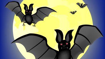 Halloween Bats wallpaper hd